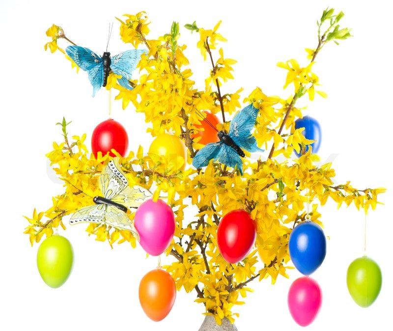 1716257-forsythia-flowers-and-easter-eggs